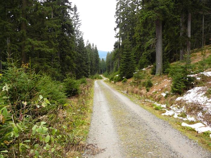 Cesta kolem hory